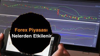 Photo of Forex Piyasası Nelerden Etkilenir Biliyor muydunuz?
